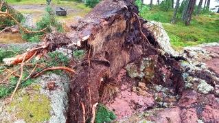 Kiira myrskyn tuhoja saaressa.